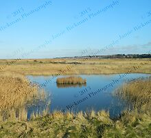 Lone Island - Blakeney to Cley Walk  by jamierickman