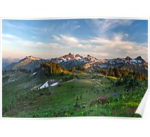Tatoosh Range Wildflowers from Mazama Ridge Poster