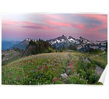 Mazama Ridge Wildflowers Poster