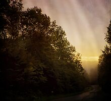 The Simple Path Home by PineSinger