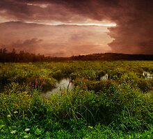 As The Storm Ends by PineSinger