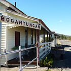 Rail Station ,Bogantungan ,Qld by Virginia  McGowan