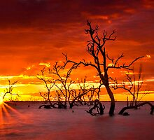 Red Hot Sunrise by Chris Brunton
