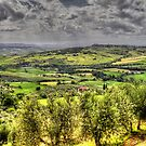 Tuscany - Looking towards Pienza by Robyn Carter