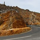 golden roadside hills  by gaylene