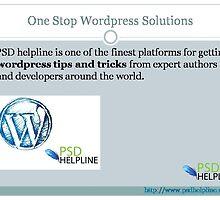 Best WordPress Tips & Tricks For Programmers by psdhelpline