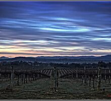 HDR Sunrise behind Holt/Canberra/ACT by Wolf Sverak