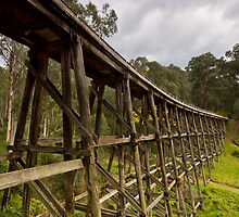 Noojee Trestle Bridge by David  Piko