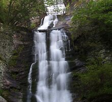 Toms Creek Falls by Forrest Tainio