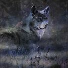 The time of the wolf by Alan Mattison