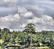 Callaway Gardens by A.R. Williams