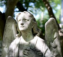 Angel Statue, Oak Hill Cemetery by Kelly Morris