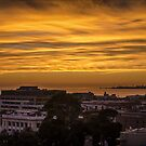 Morning Glory - Corio Bay Geelong by bekyimage