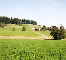 Green Swiss Farmland by visualspectrum