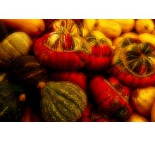 Gourds Of St. Jacobs Photographic Print