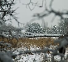 Eling in the snow by Mike Daish Photography and Design