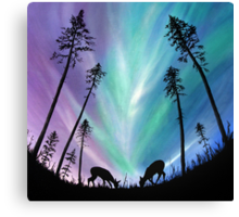 Deer grazing over Northern Lights Canvas Print