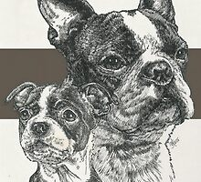 Boston Terrier, Father & Son by BarbBarcikKeith