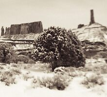Holga Photo of Castle Valley, Utah In Winter  by strayfoto