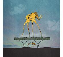 Dalimt Prehistoric Fantasy Photographic Print