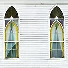 BROKEN GLASS AND NARROW CLAPBOARDS  by Thomas Barker-Detwiler