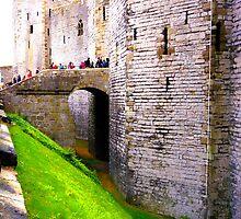 Caernarfon castle by davidautef