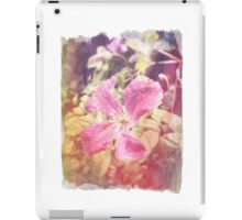 Antique Look Late Summer Purple Clematis Photograph iPad Case/Skin