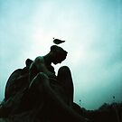 Bird Hair Day - Lomo by Yao Liang Chua