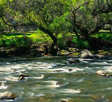 Flowing Waters of Río Tomebamba by Paul Wolf