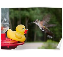 Rubber Ducky meets distant cousin Poster