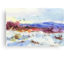 Unusual Winter in South Africa Canvas Print