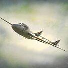 Vampire Jet by peaky40