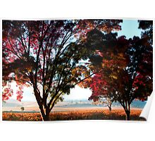 Autumn Sunrise in the Barossa Poster