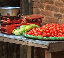 Tomatoes by Alan Robert Cooke