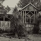 'Waldenheim,' Weindorfer's Chalet, Cradle Mountain, Tasmania #2 by Elaine Teague
