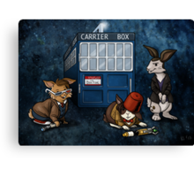 Doctor Whobuns Canvas Print