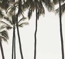 Palm Trees by melaniewoon