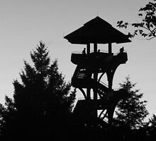 The Lonely Lookout (Black and White) by Brian Schell
