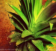 Pineapple  by ctdgraphicx