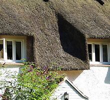 Under a Thatched Roof by Alexandra Lavizzari