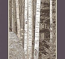 Aspen Grove (Sepia, Plum Border) by Hannelore Dean