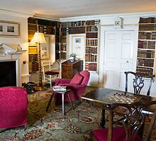 interior library by Anne Scantlebury