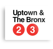 Uptown & The Bronx Metal Print