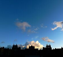 Evening palace view in silhouette. by Colin Tester