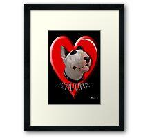 LOVE for my Bull Terrier Framed Print