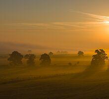 September Morning II by John Dunbar