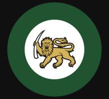 Rhodesian Air Force Emblem Kids Clothes
