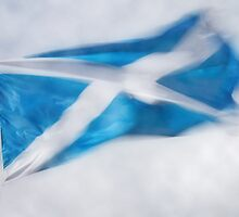 Scotland Flag by Linda  Morrison