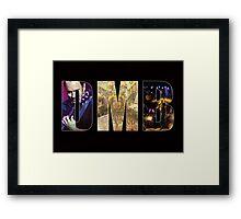 Dave Matthews Band Framed Print