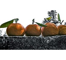 A wall of tangerines 1 Photographic Print